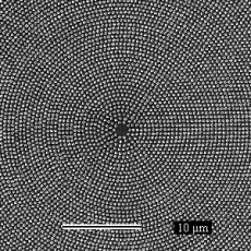 Thousands of magnetic nano-dots arranged to have circular symmetry. This sample was covered with a superconductor and had supercurrents going through these structures.